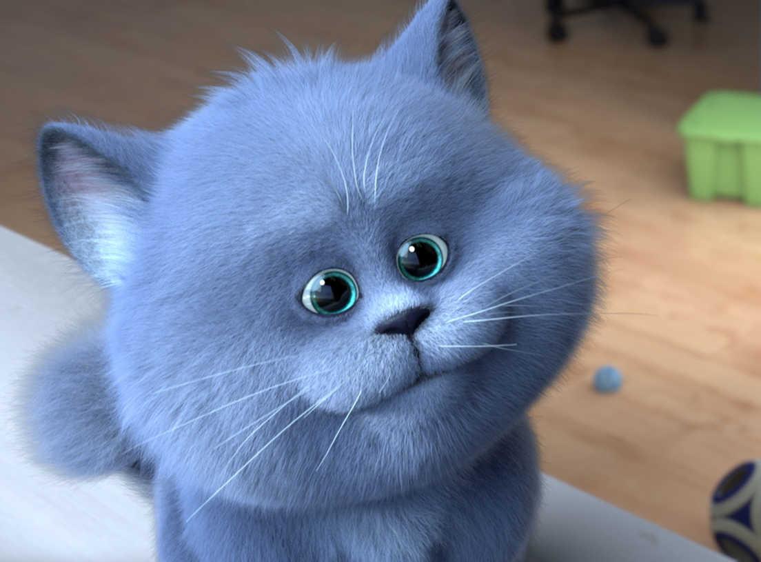 Znalezione obrazy dla zapytania sekretny świat kotów