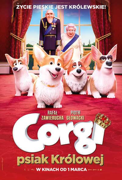Corgi - psiak Królowej