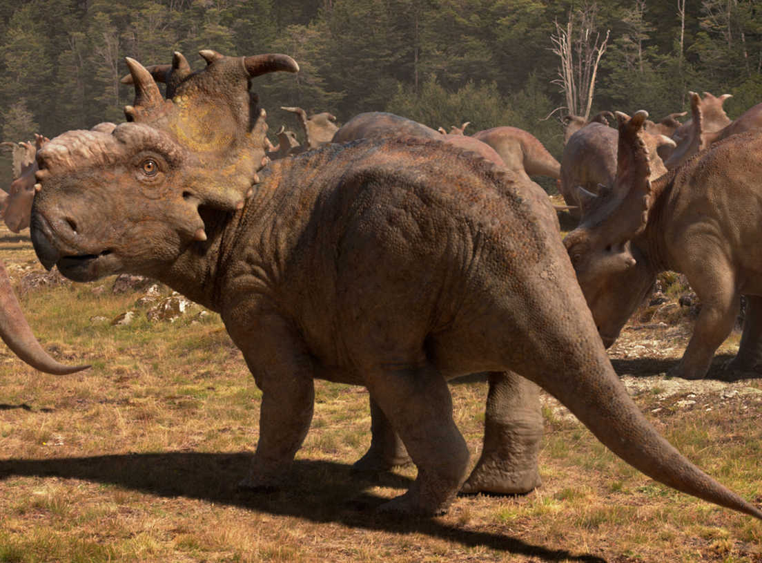 Spacer z dinozaurami